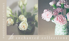 The Enchanted Collections