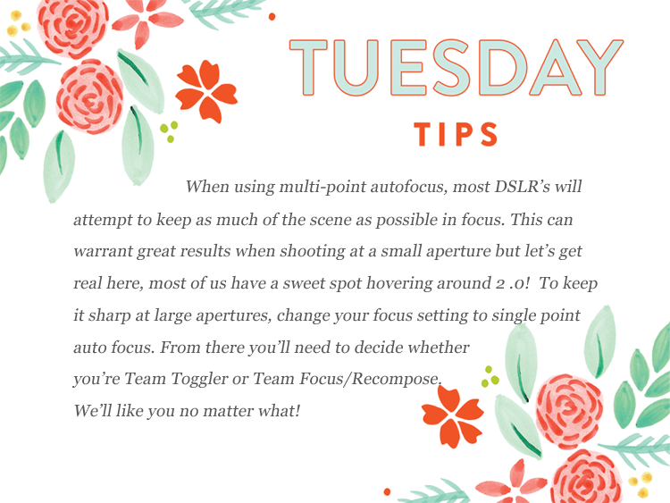 bloom's tuesday tips copy